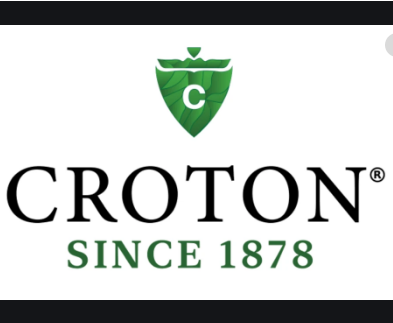 Buy 3 Get 1 Free on Select Items at Croton Watches